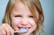 Dental Hygiene Schools