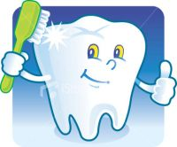 pet dental insurance